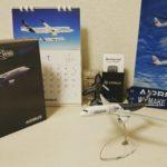AIRBUS社と提携した授業「国際航空ビジネス入門」で最終発表を行い、「倒産報告」によって「最優秀賞」を貰った話